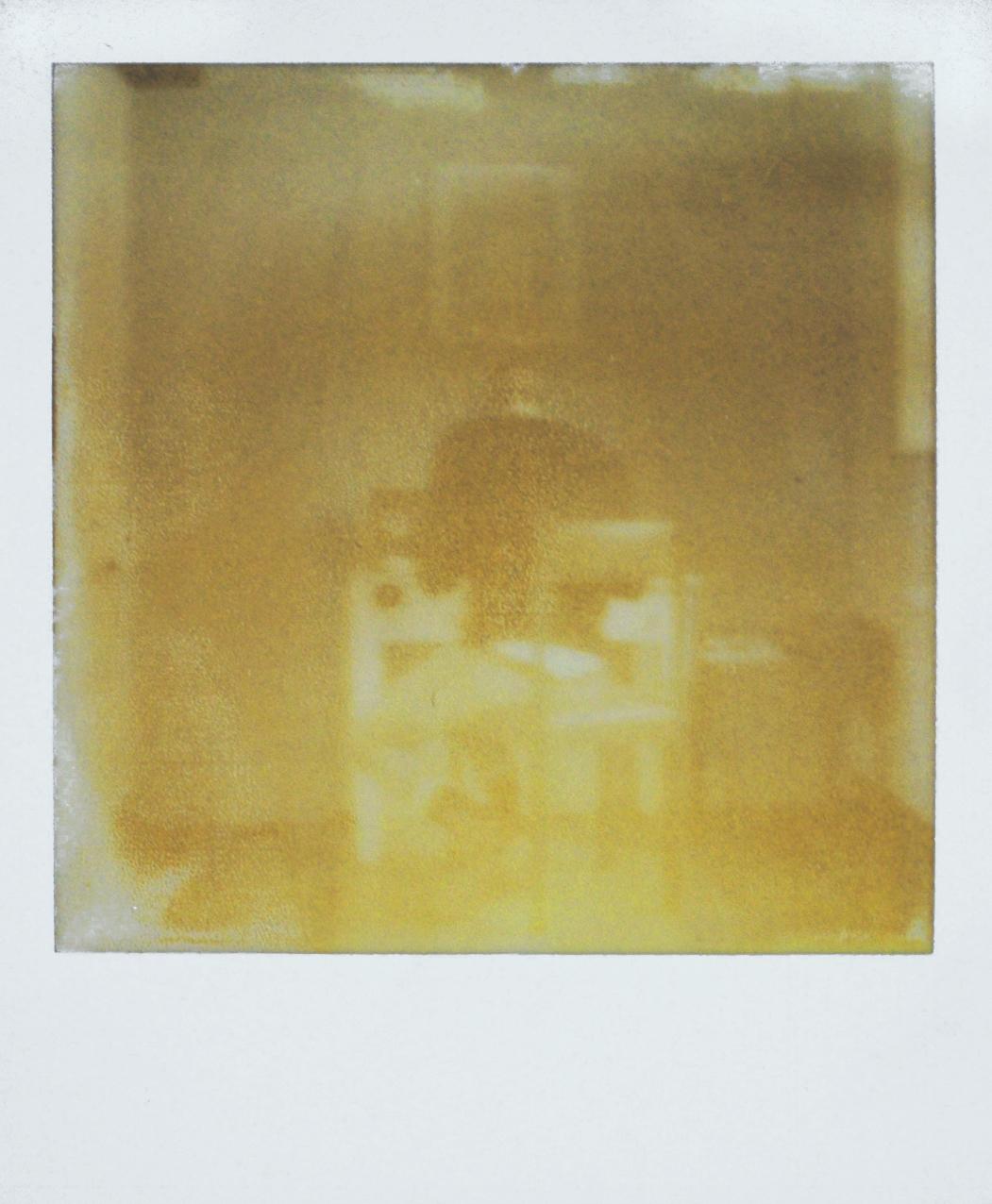 polaroid_Viveiro.jpg