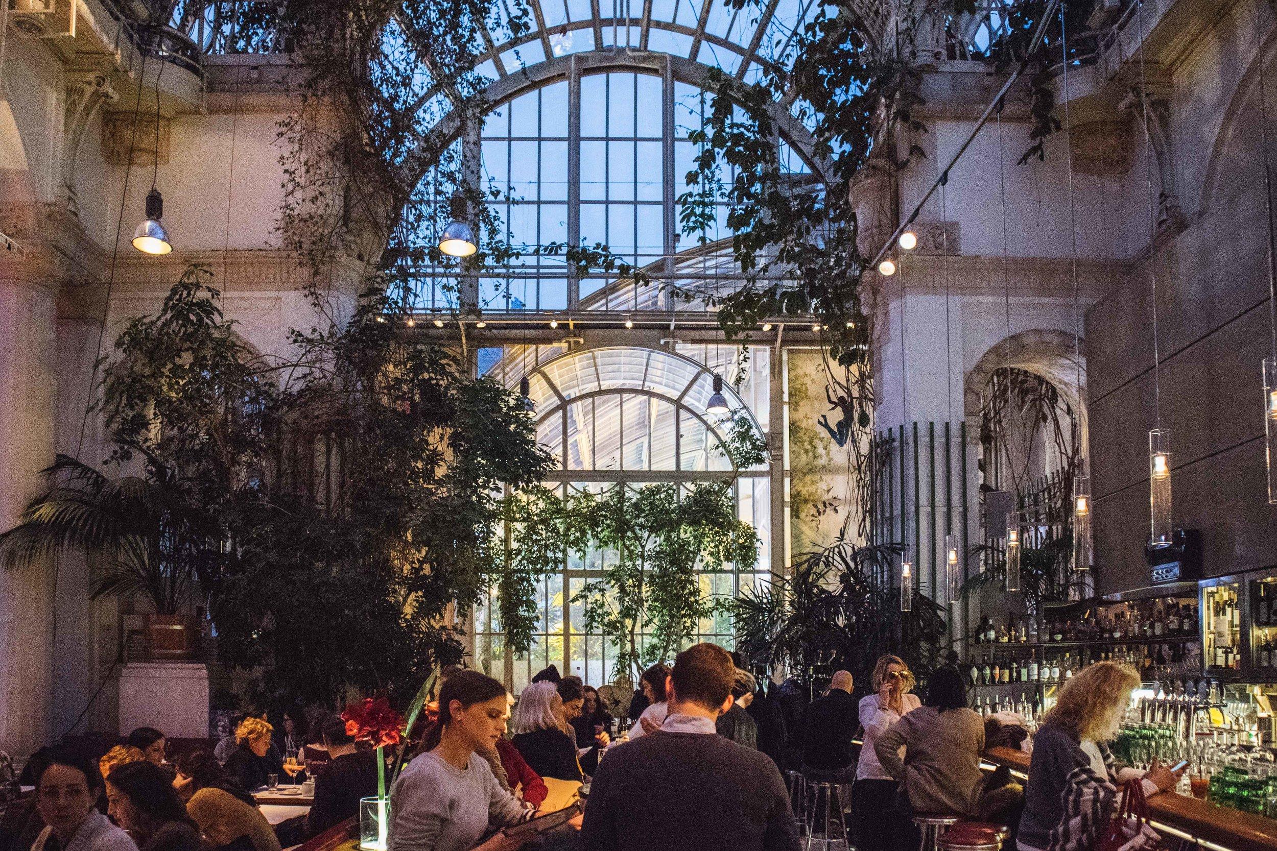 """Il Palmenhaus è una vera """"giungla-chic"""": brunch raccomandato."""