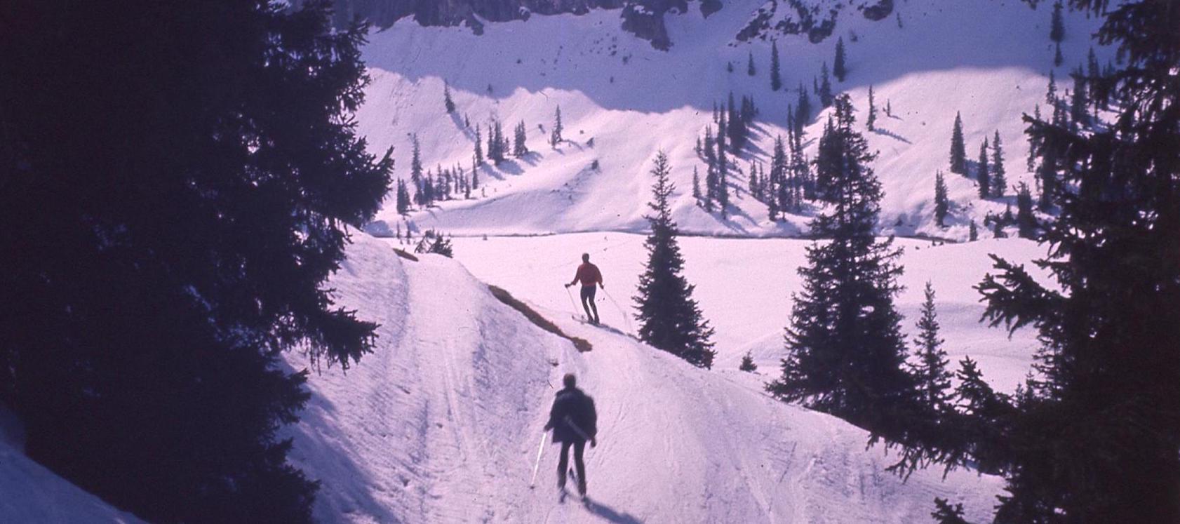 ski copy.jpg