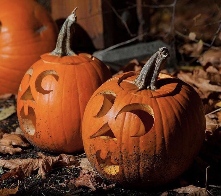 """Lanterns from pumpkins everywhere!"" Photo: @staticflux"