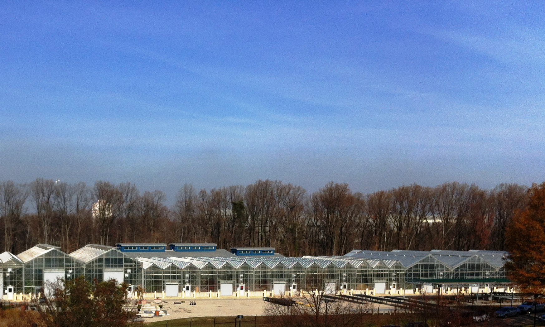 greenhousesFrMSCroof_151210.1brighter_aspectRatio.jpg