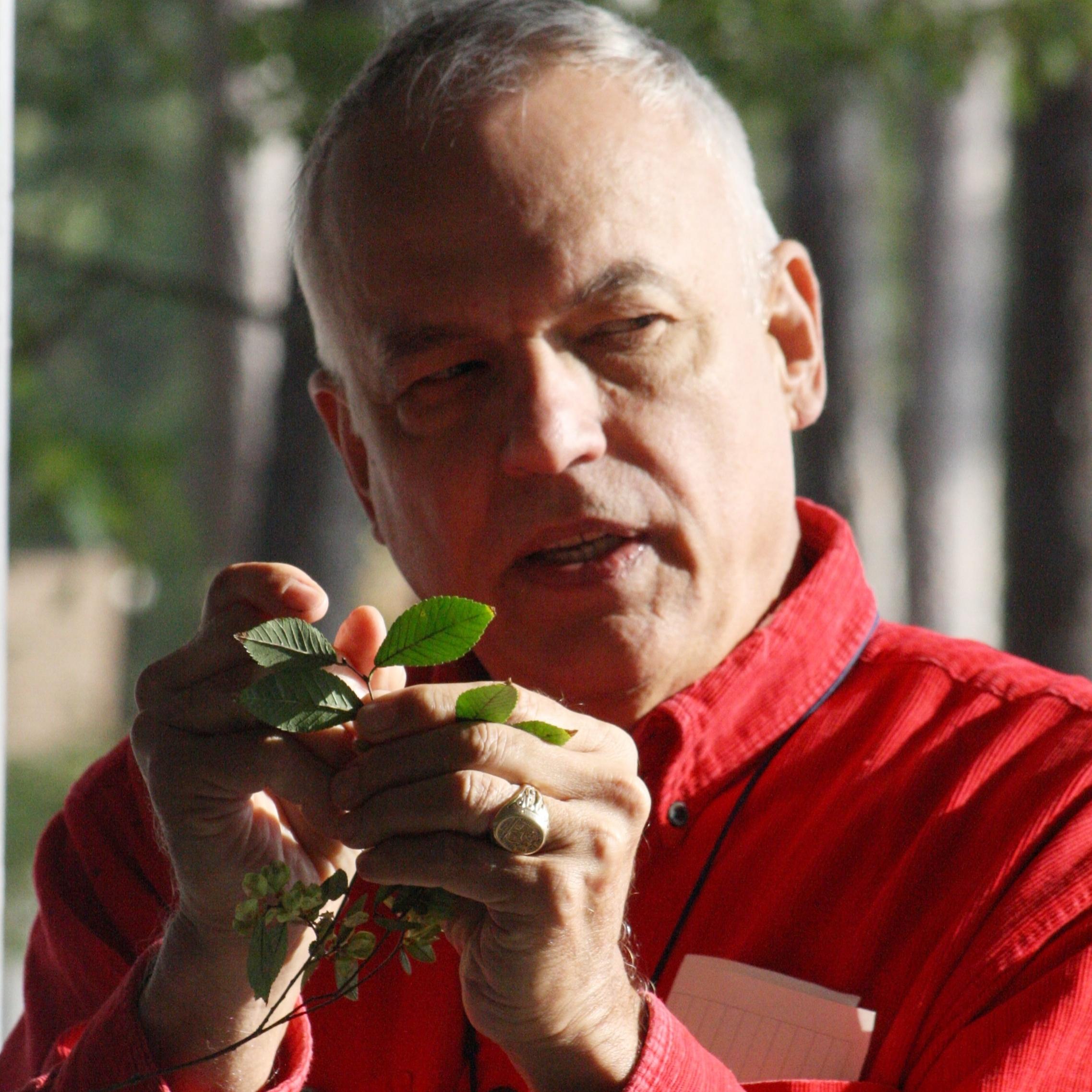 Botany 21.jpg