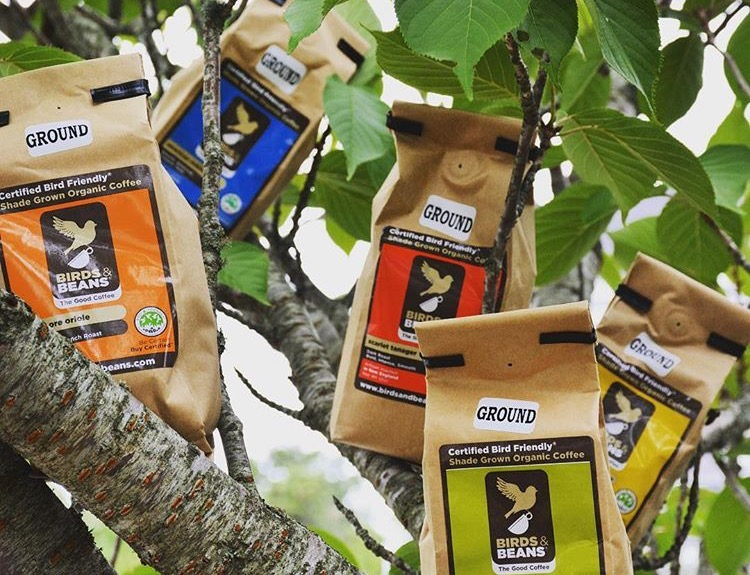 coffee bags sitting along a tree.