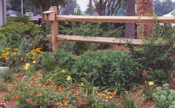 [Image Description] A Carolina fence surrounded by flowers and plants.