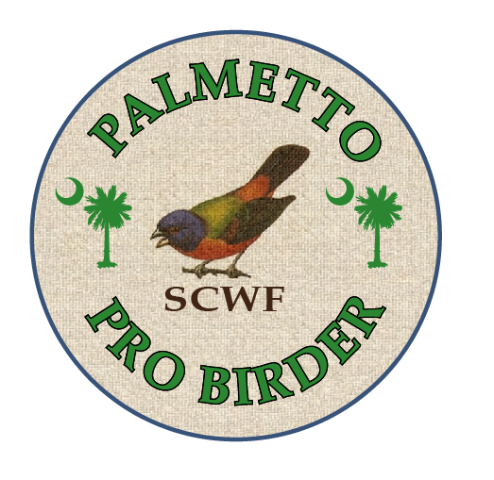 New PB Logo.png