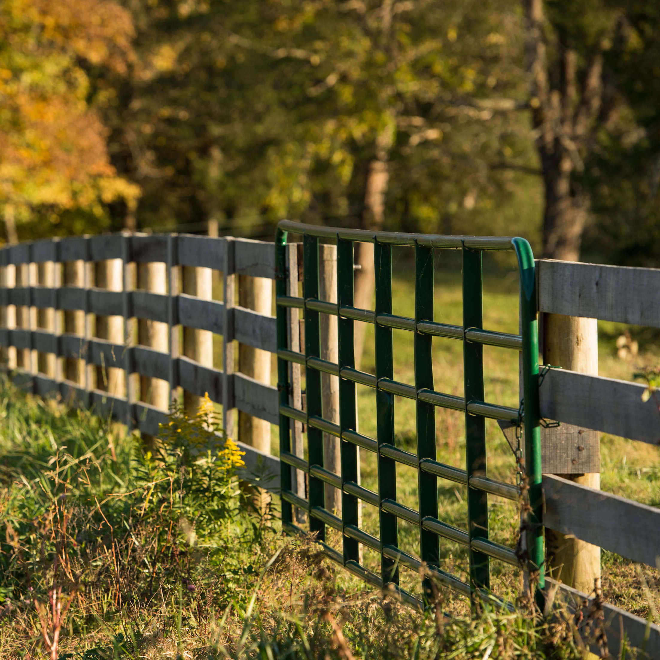 Gates Amp Corrals Tarter Farm And Ranch Equipment