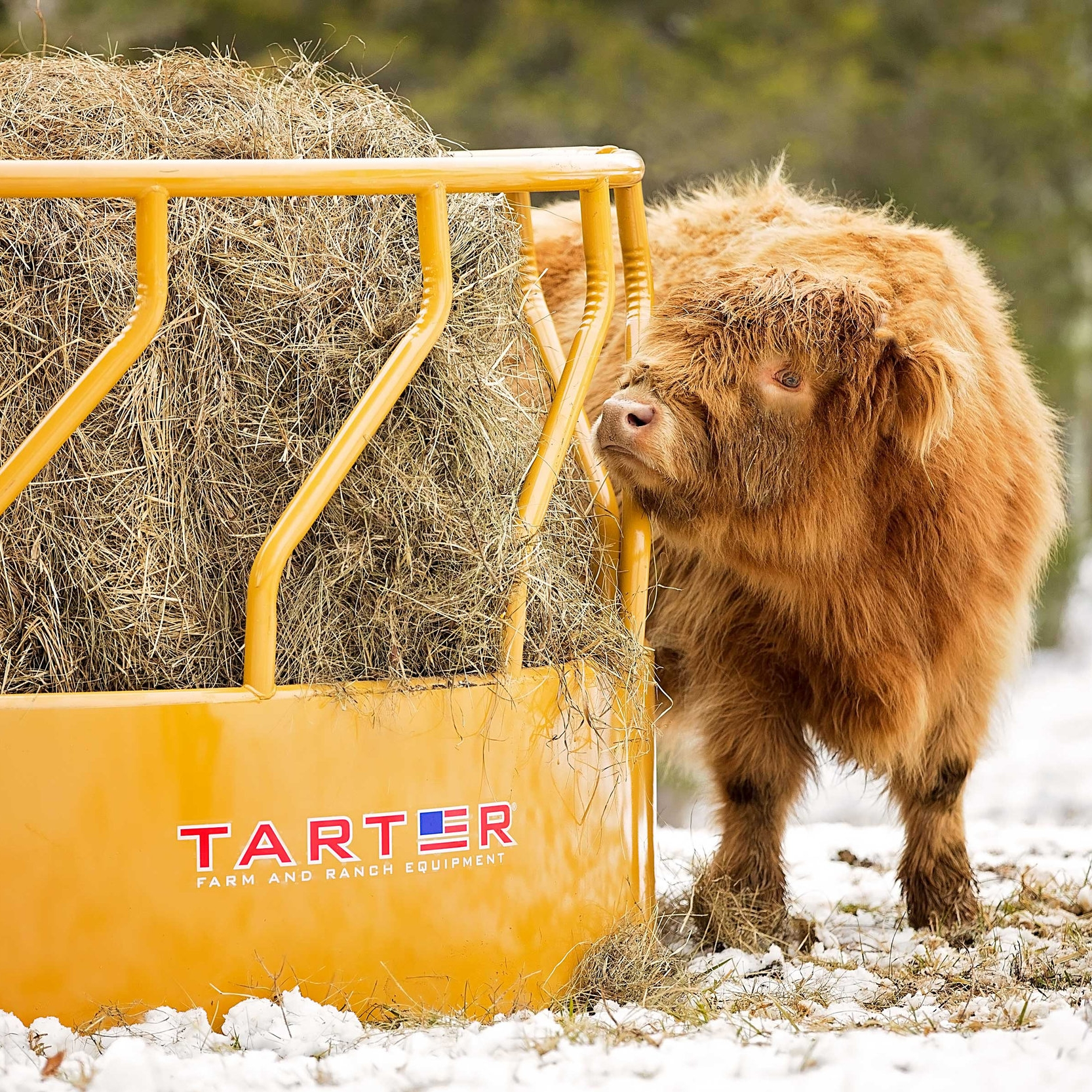 Feeders — Tarter Farm and Ranch Equipment | American Made