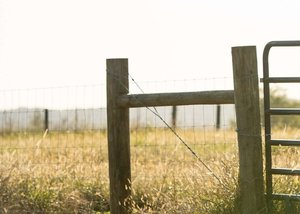 fence building -