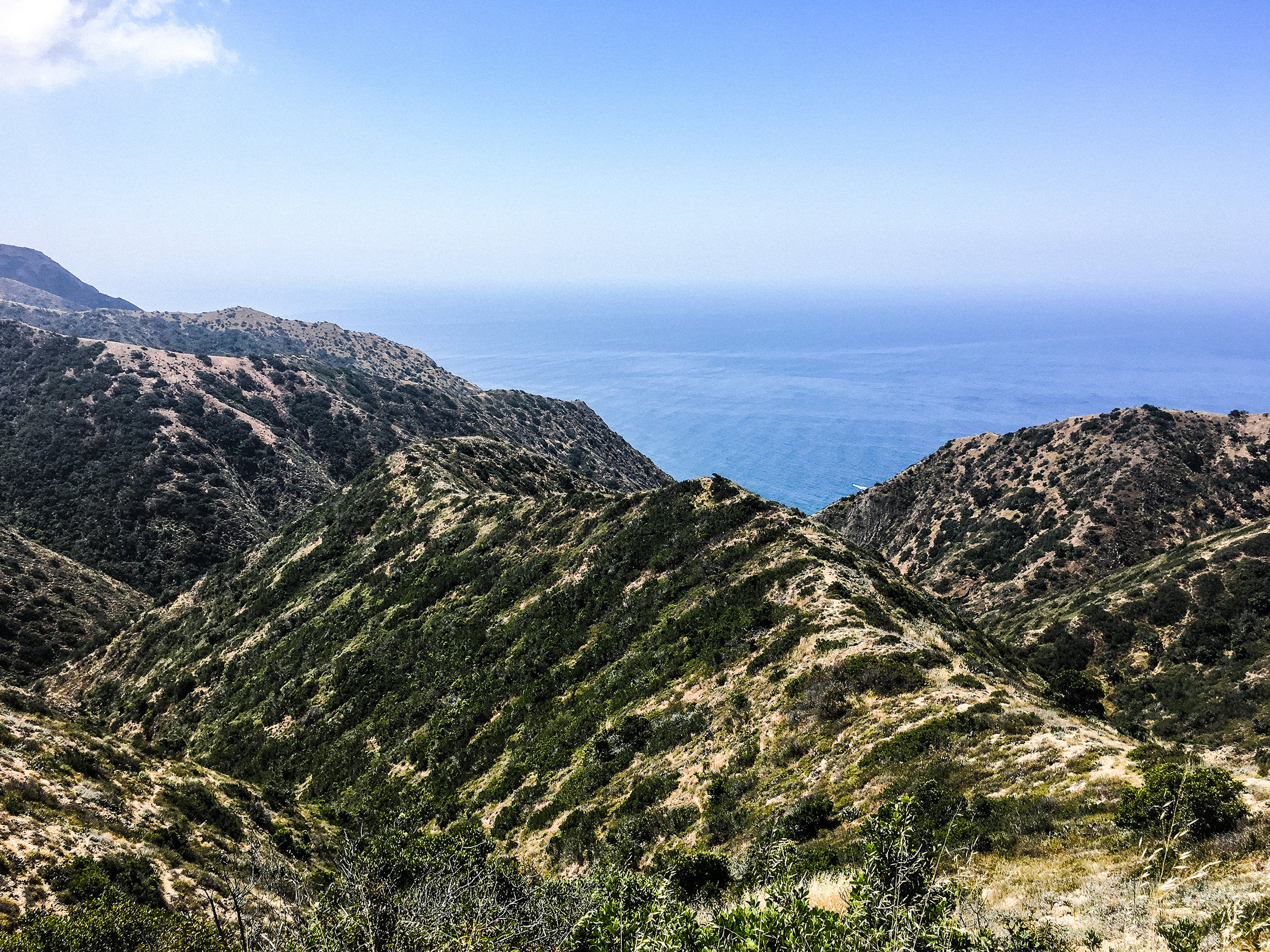 Catalina_Mountains.jpg