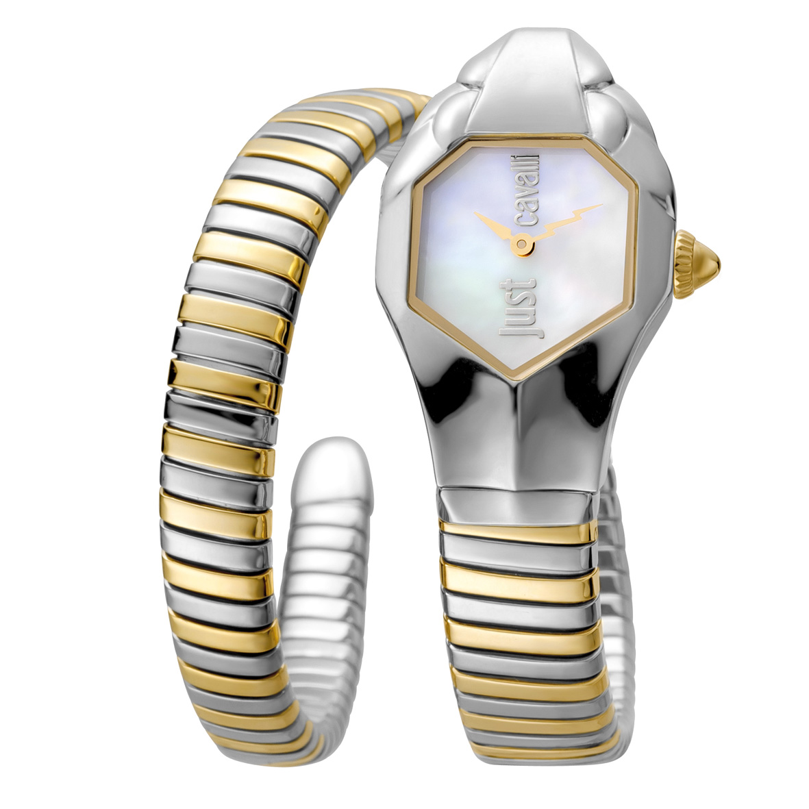 JCW1L001M0035_just-cavalli_watches.jpg