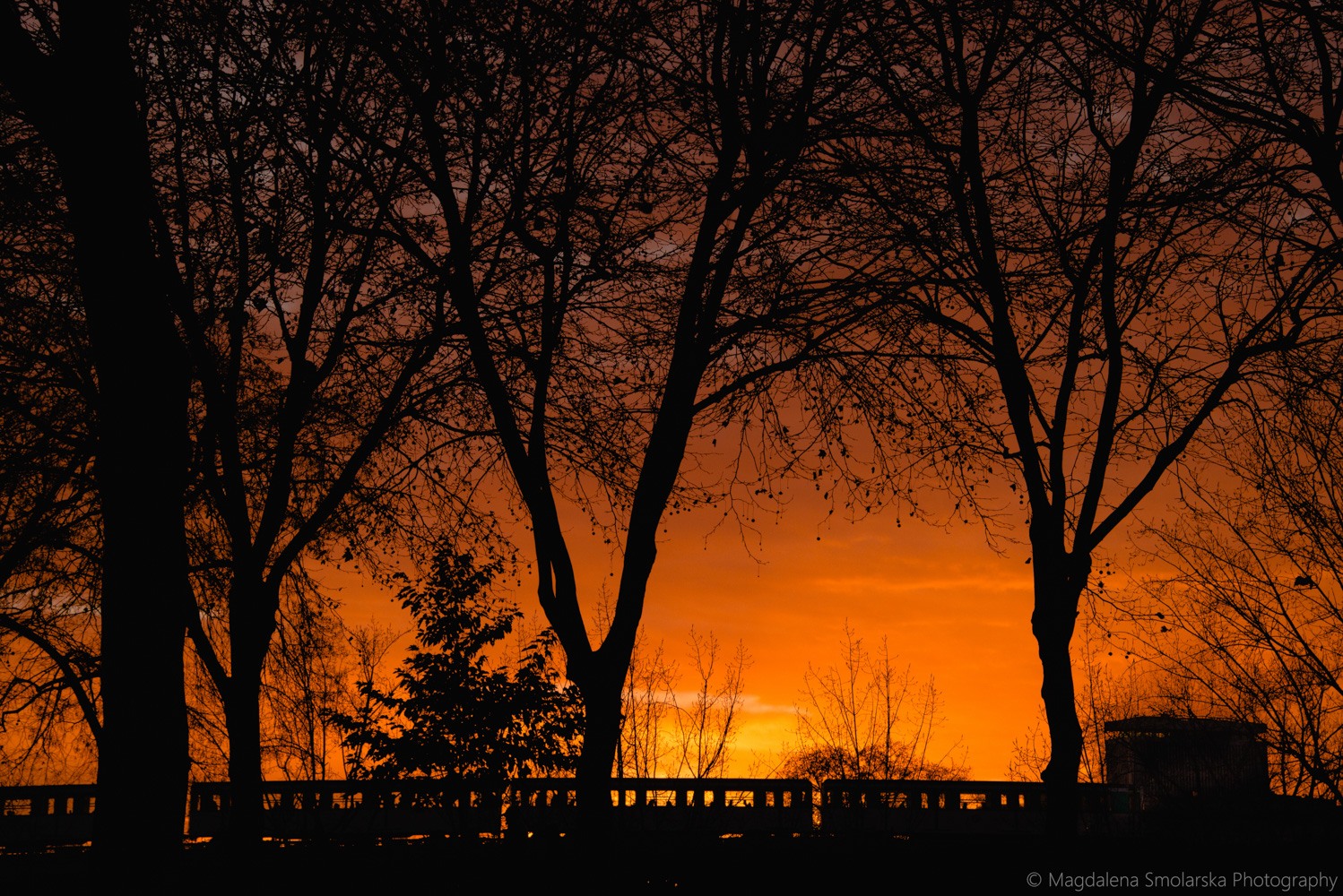 London & Brighton Portrait Photographer- Amazing red sunset in Paris