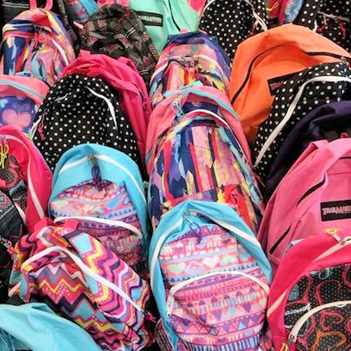 backpack, 500x500.jpg