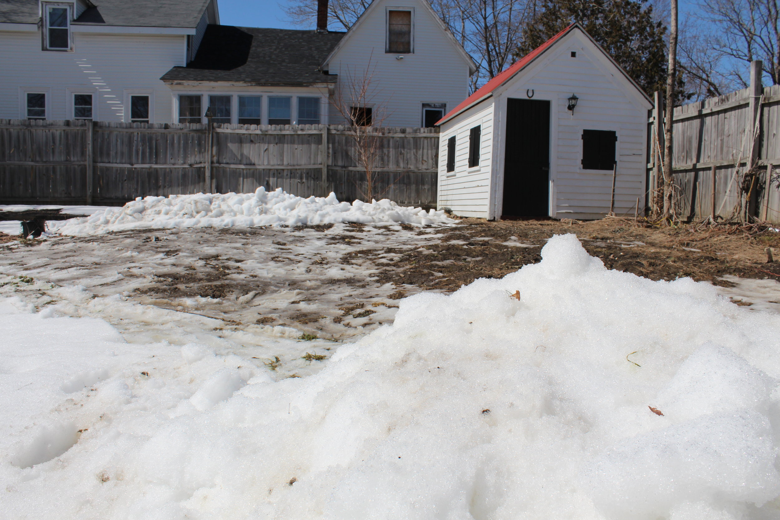 I had to shovel the snow out of my pumpkin patch so I could set up my hoop house and transplant my seedlings.