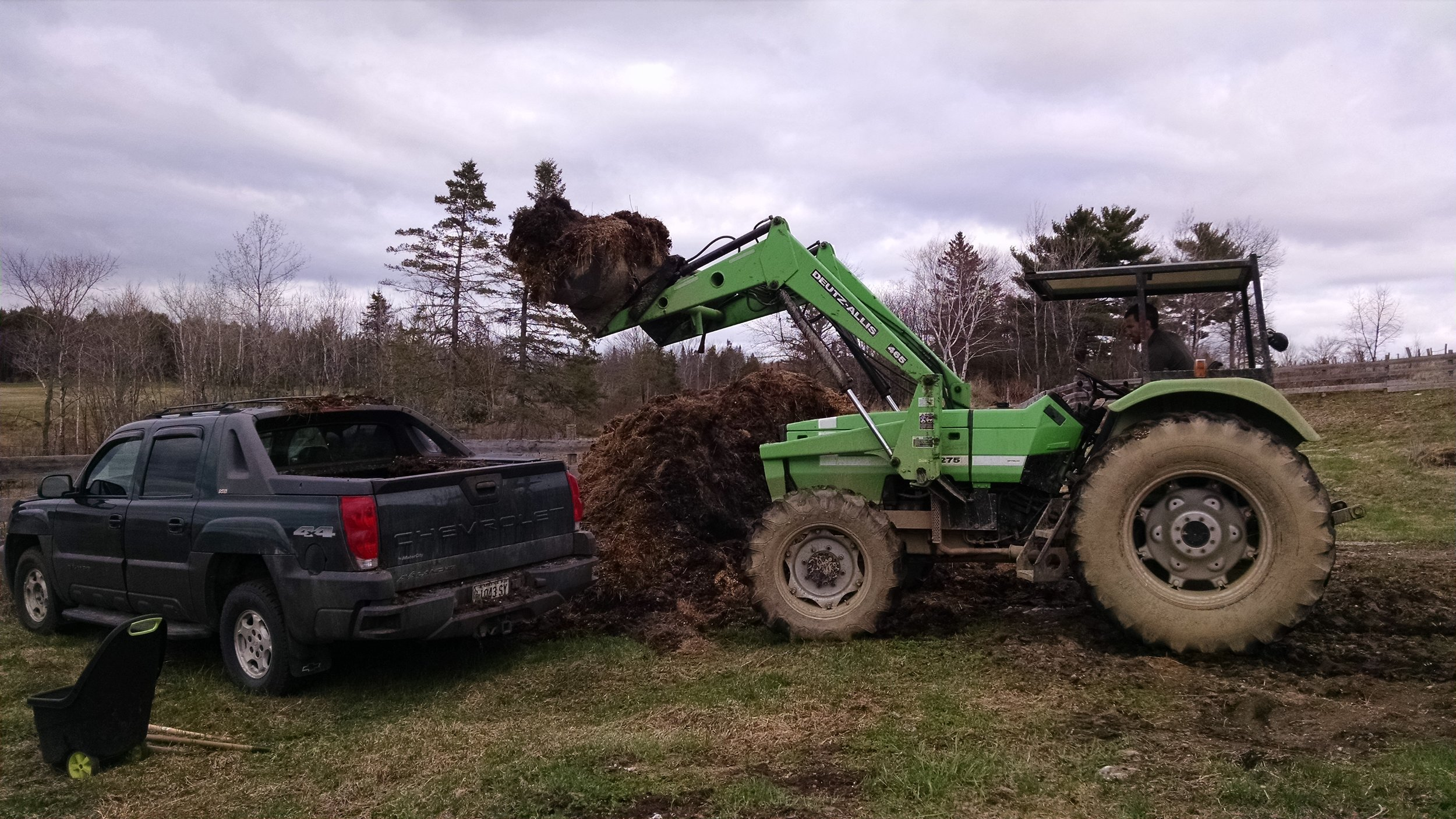 Loading up our truck with cow manure. Tractors are great!