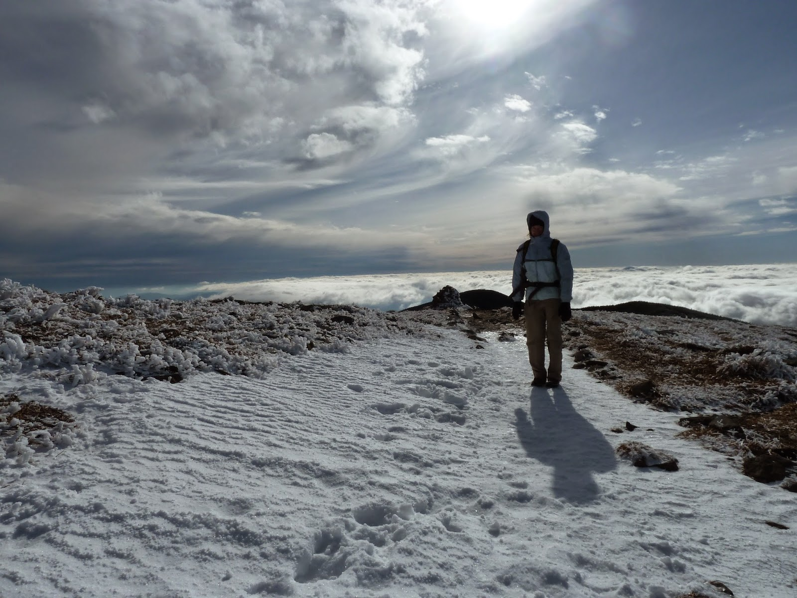 Summit of Mount Moosilauke in the snow