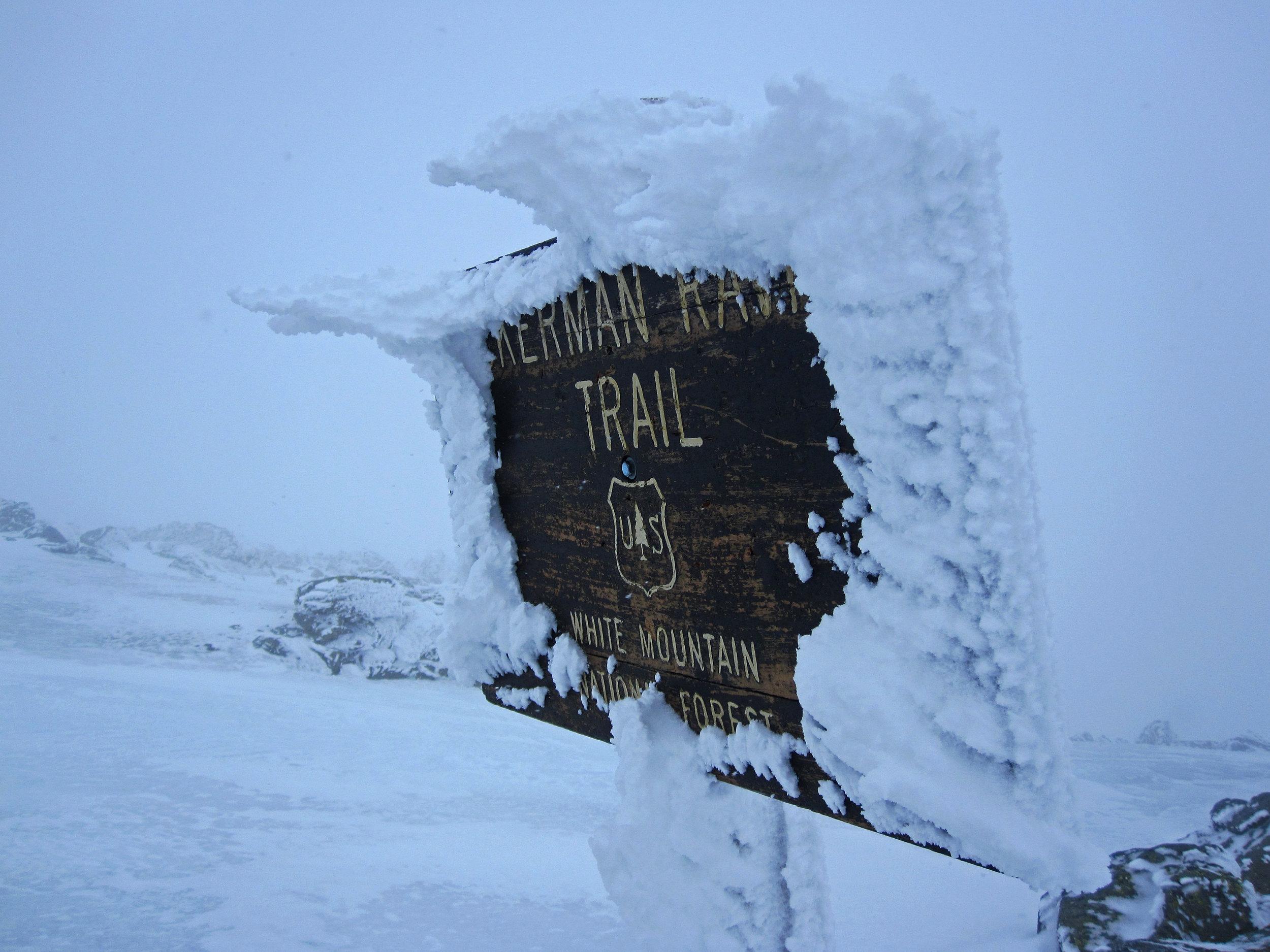 Rime Ice on the Tuckerman Ravine Trail