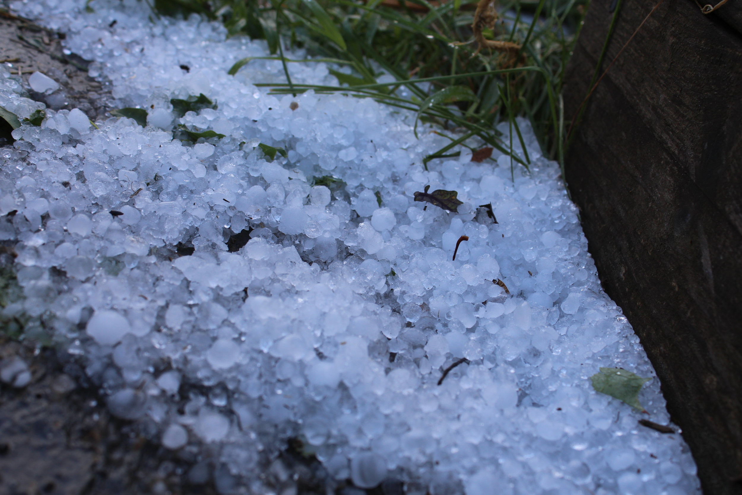 This is a photo I took when I got home, which was over an hour after the hail storm hit. This was no joke!