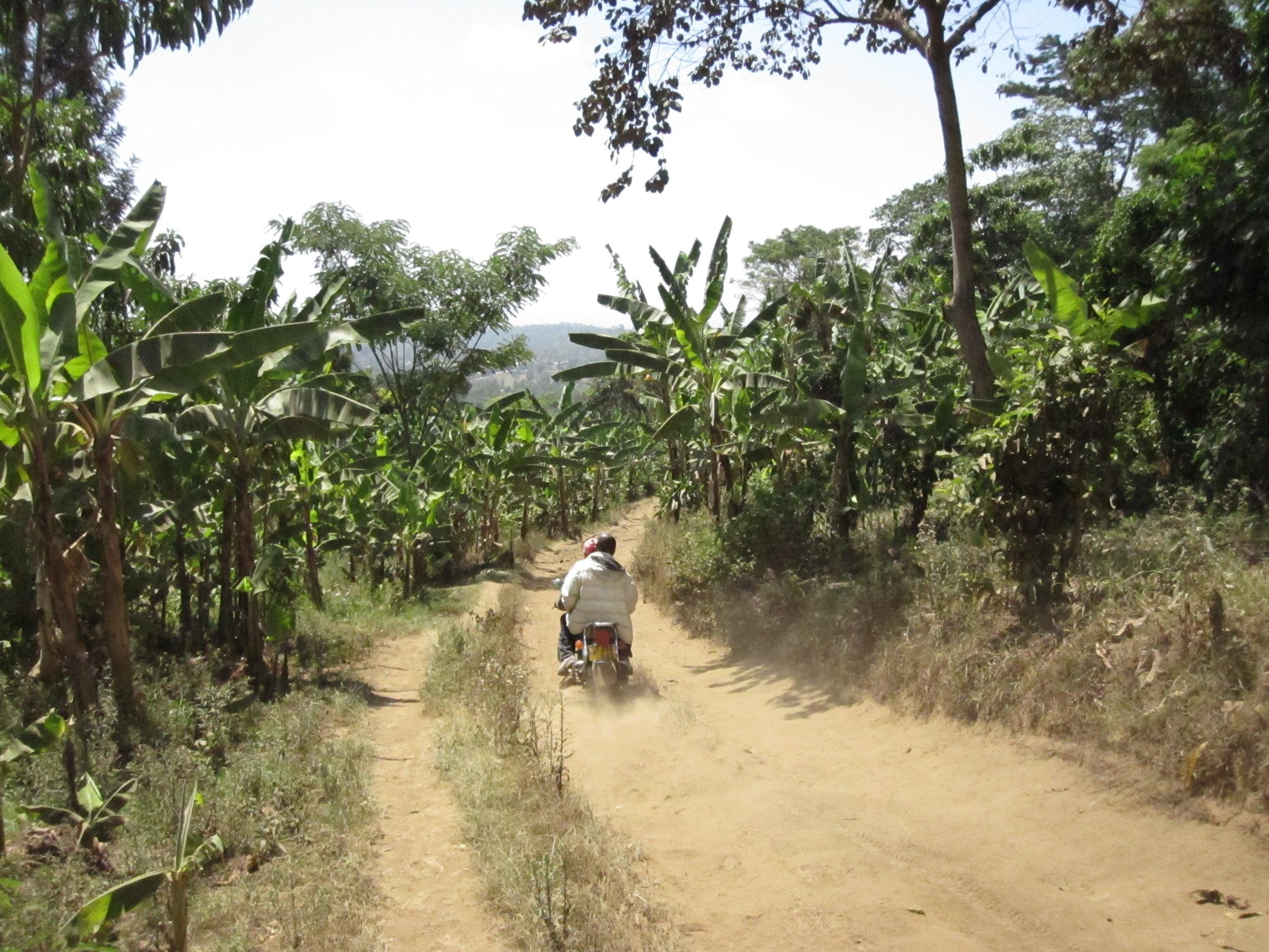 Dusty dirt road near Mount Meru