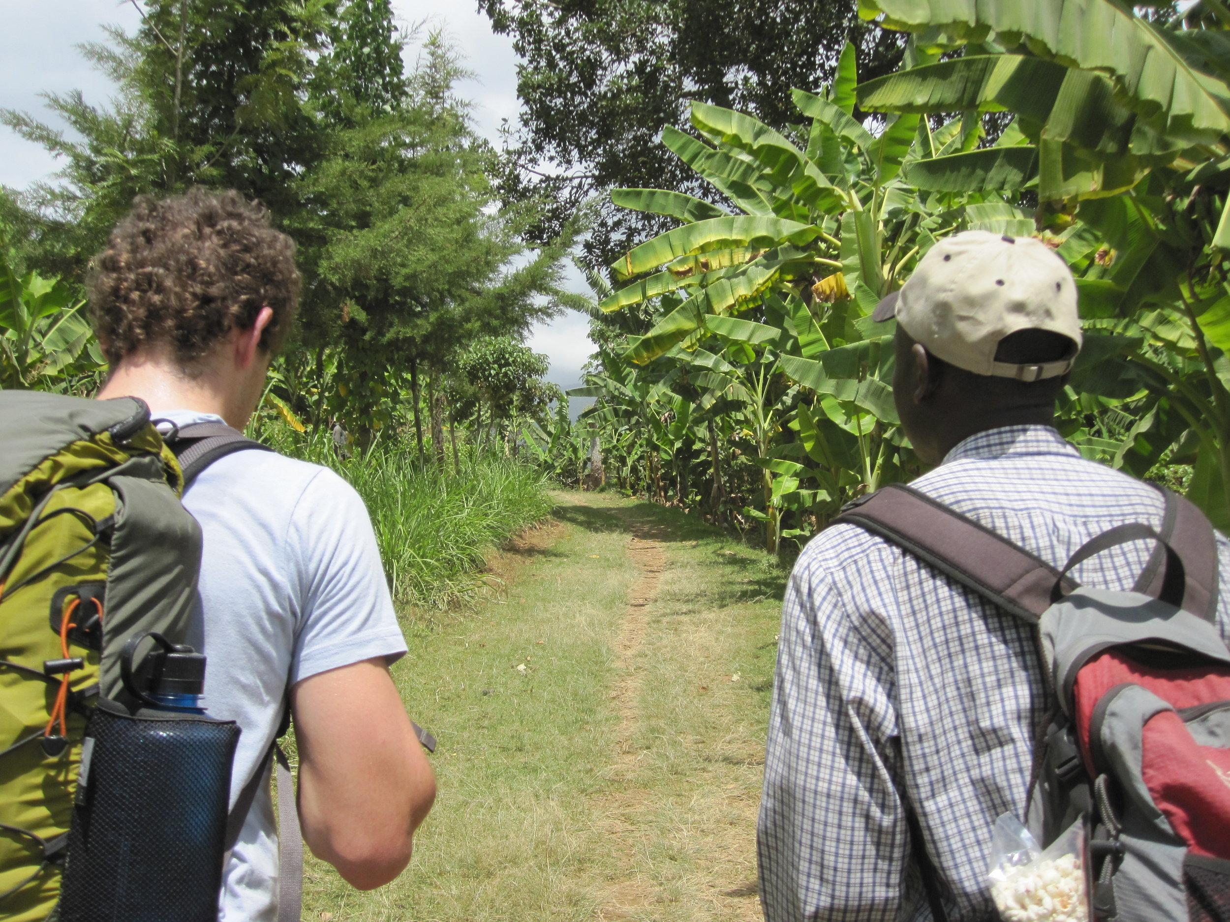 Exploring vegetation in Arusha