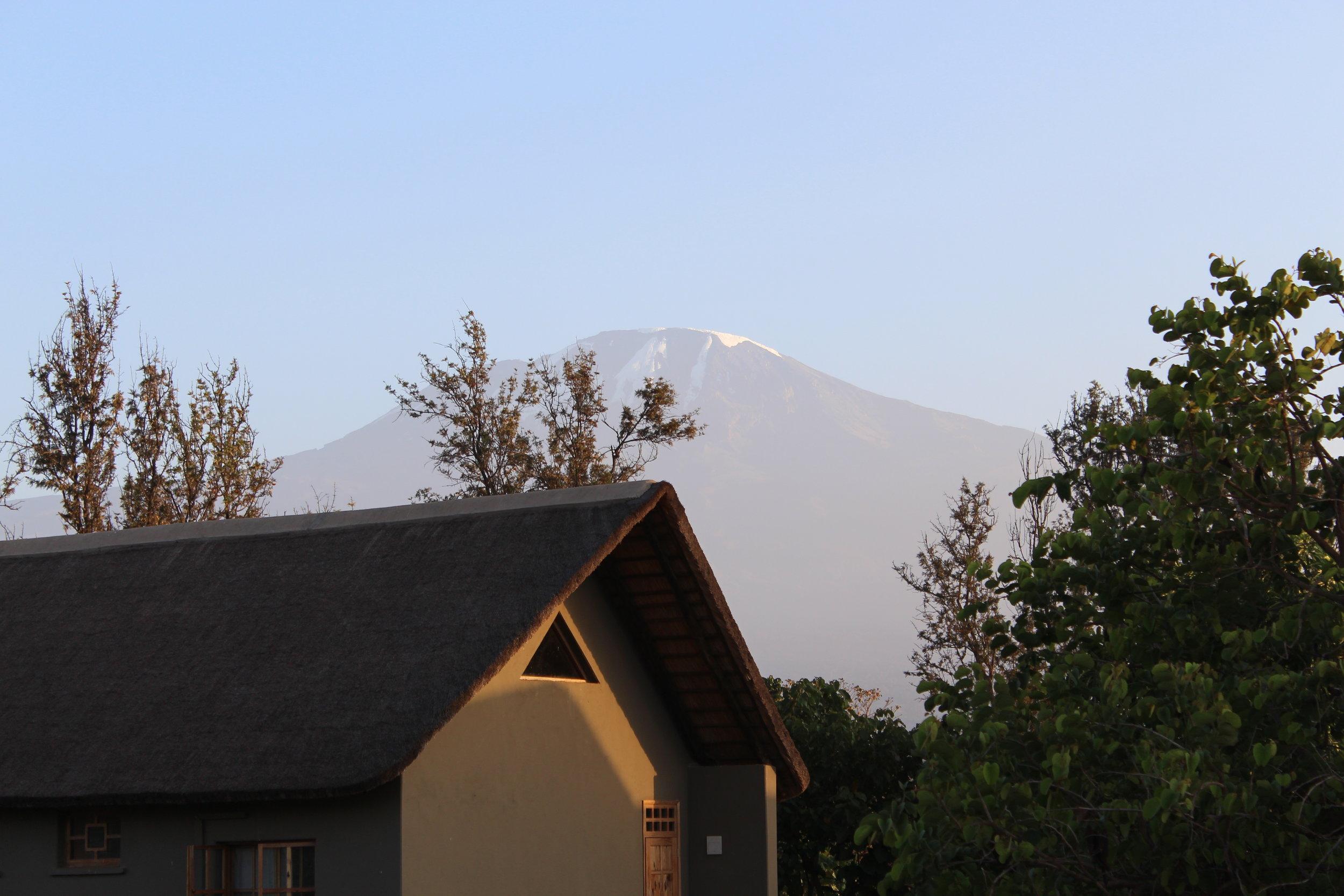 View of Mount Kilimanjaro from Weru Weru River Lodge.