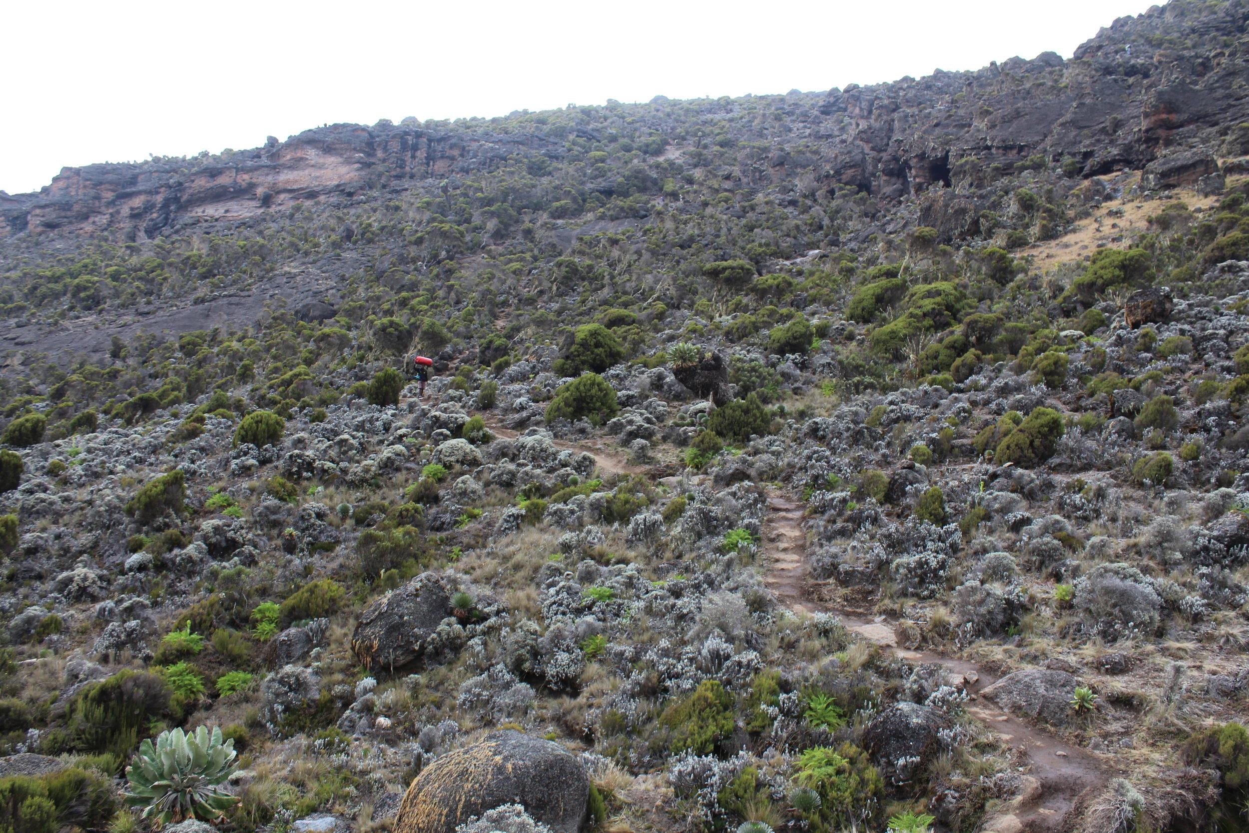 Last uphill stretch before Karanga Valley Camp