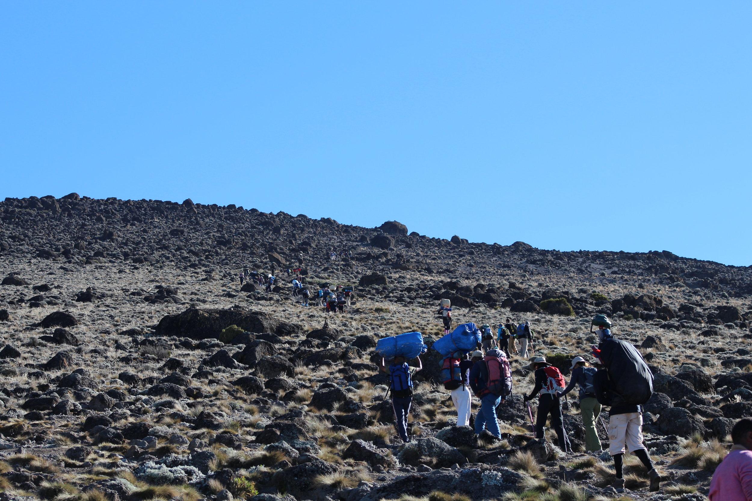 Porters leaving Karanga Valley Camp