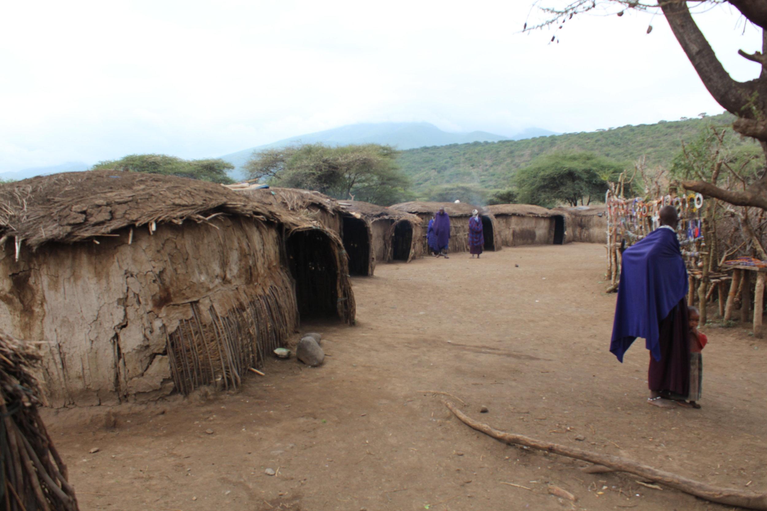 Massai village huts