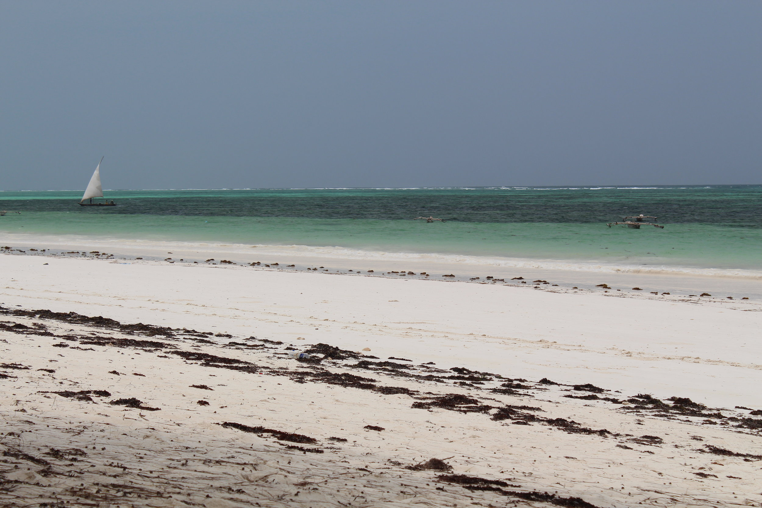 Beach at Kiwengwa, Zanzibar