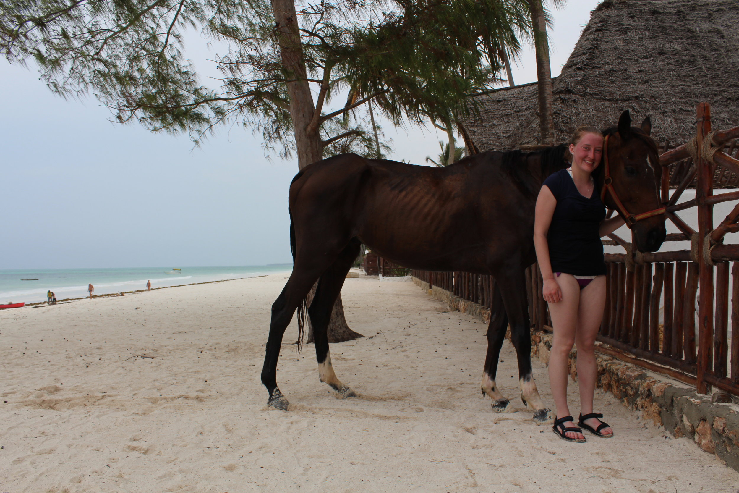 With my horse after our swim. I wish he wasn't so skinny, I felt bad seeing his ribs sticking out.