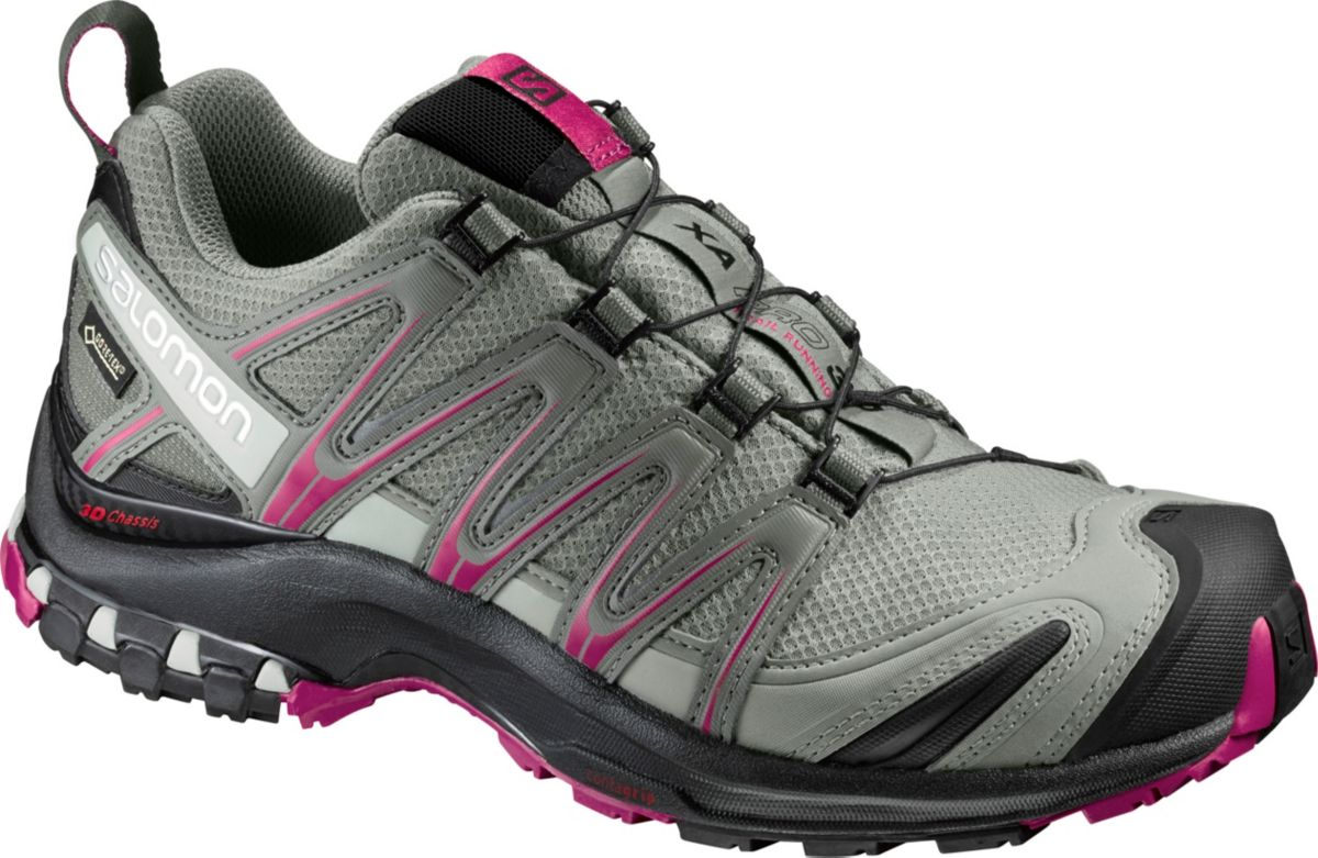 Salomon shoe.jpg
