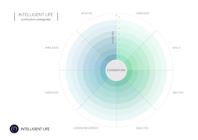 Curriculum-Categories-(colour).jpg