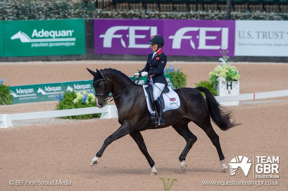 Sophie and Jorge in the arena at WEG