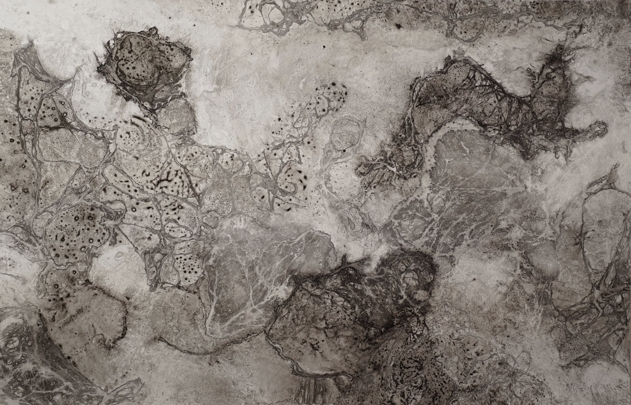 """Sea Made Land. 2018 Ink on paper 26 x 40"""""""