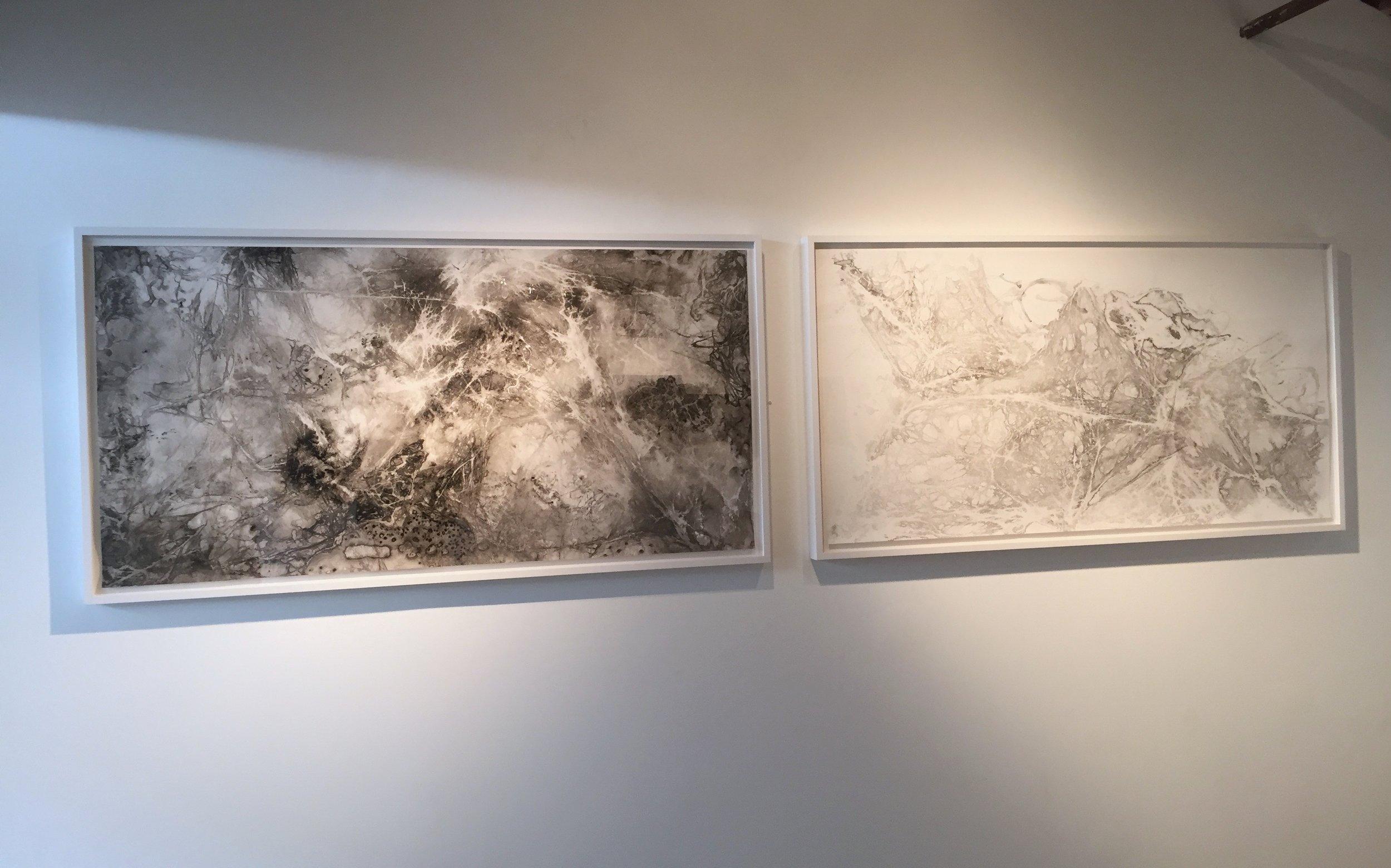 "Cocoon & Soar 30 x 60"" Ink on paper"