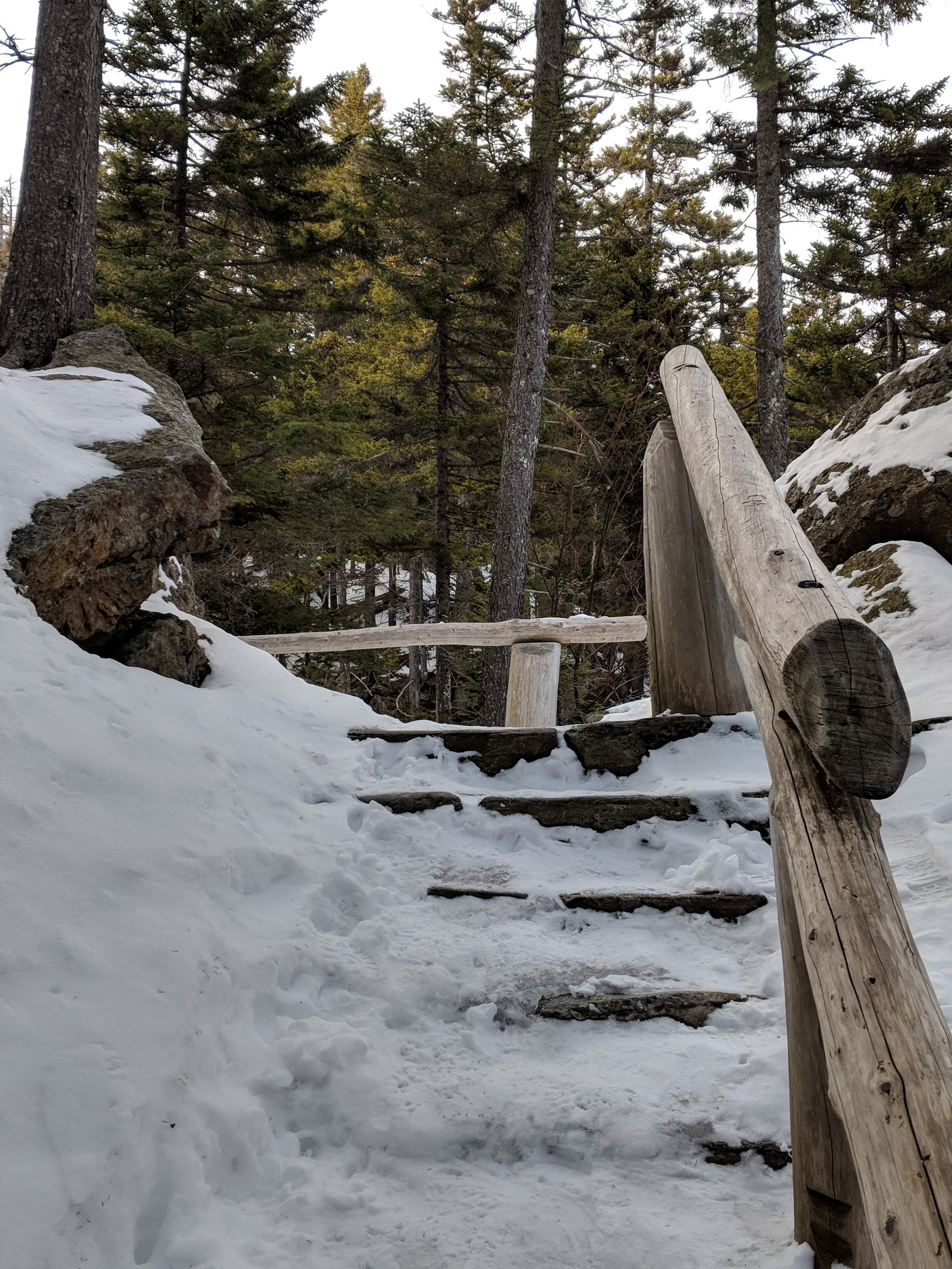 Stairs breaking through - The easiest section of stairs. Those log railings were the only way I made it there and back.