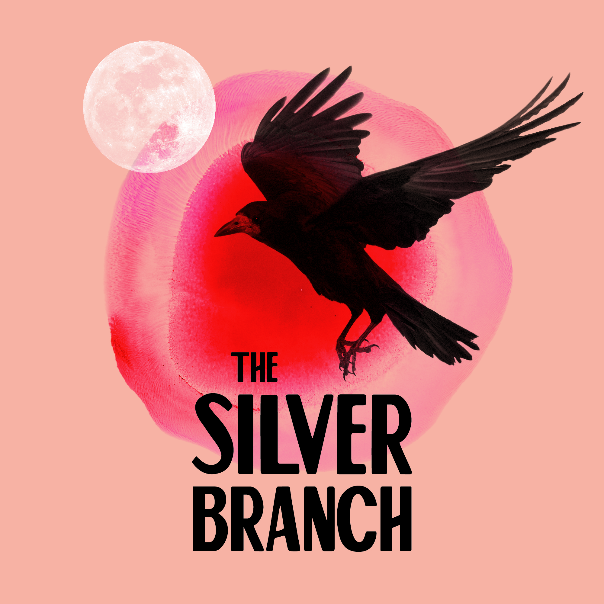 In 2018 DANI was an awardee of the Help Musicians Fusion Fund. The result of this funding was 'The Silver Branch'. DANI wrote the story of The Silver Branch, which explored the contemporary debate on reproductive rights in Northern Ireland through the lens of Celtic mythology, and worked with playwright Alice Malseed who developed the story for the stage. The piece was performed in December 2018 to a sold out audience in queer arts space  The343  and was supported by  Alliance4Choice . Poster design by Sarah Pannasch.