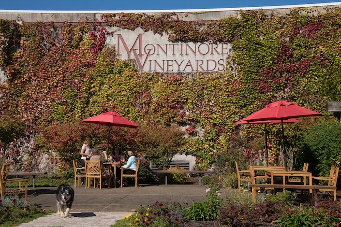 Montinore_Estate_GreatNorthwestWine.jpg