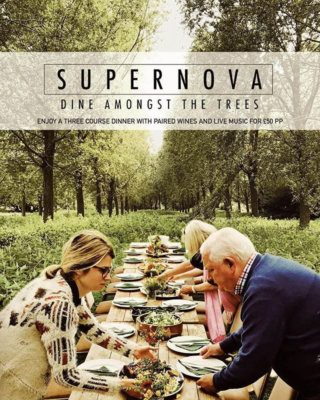 Dine amongst the trees at Standon Calling festival. Three course meal, paired wine and live music. £50 PP #getyourticketsnow @standoncalling @mayflywine @novapresents