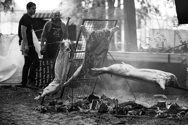 Great pic from @mpm_photos1 The early hours of last Saturday, preparing for the main event for our Supernova Banquet @standoncalling @novapresents @mayflywine #fireroastedpig #standoncalling #musicfoodwine #markmitchell #asado #pig #thehungrypiglets #dineamongstthetrees #supernova #banquet