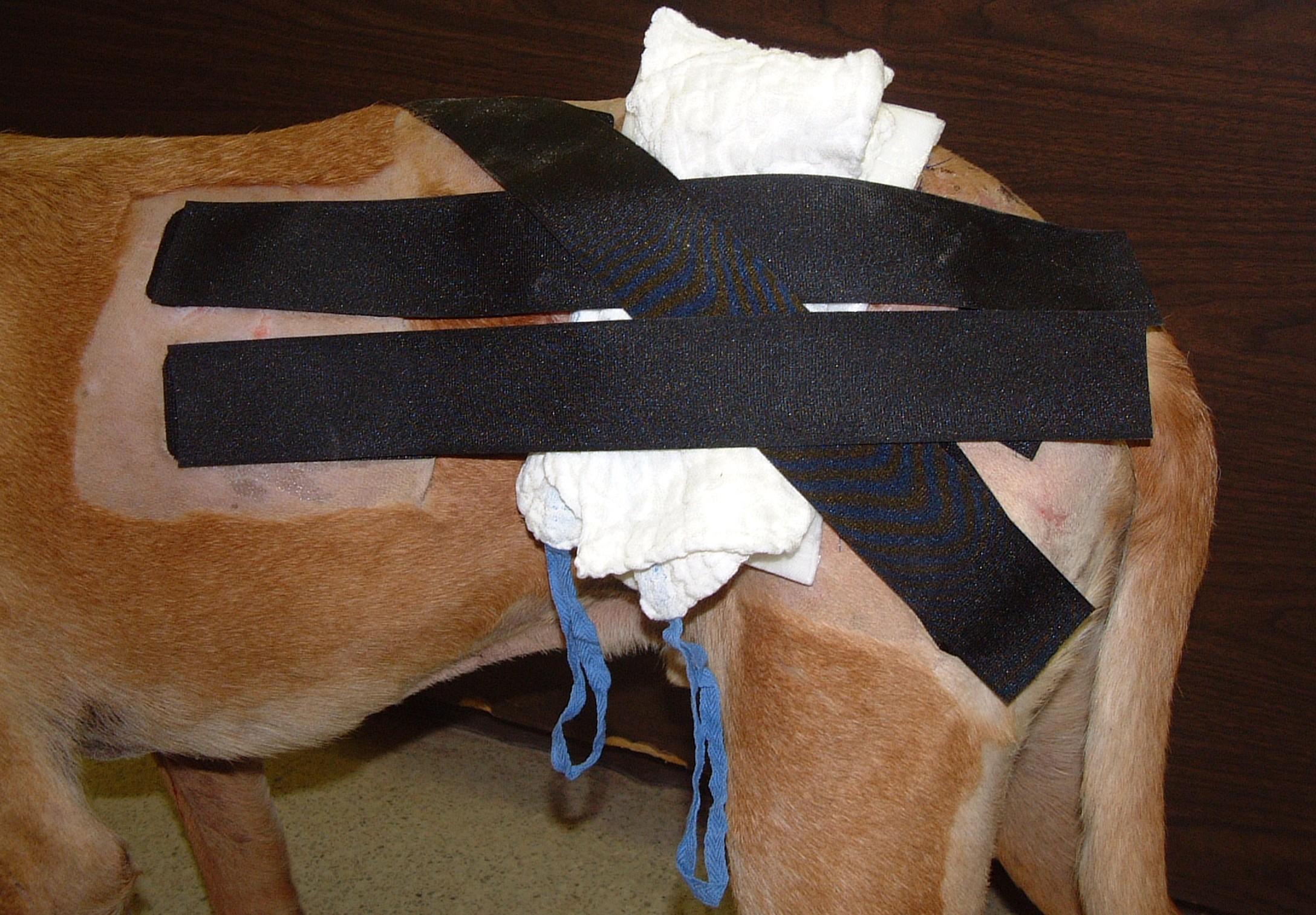 Velcro Strips Applied