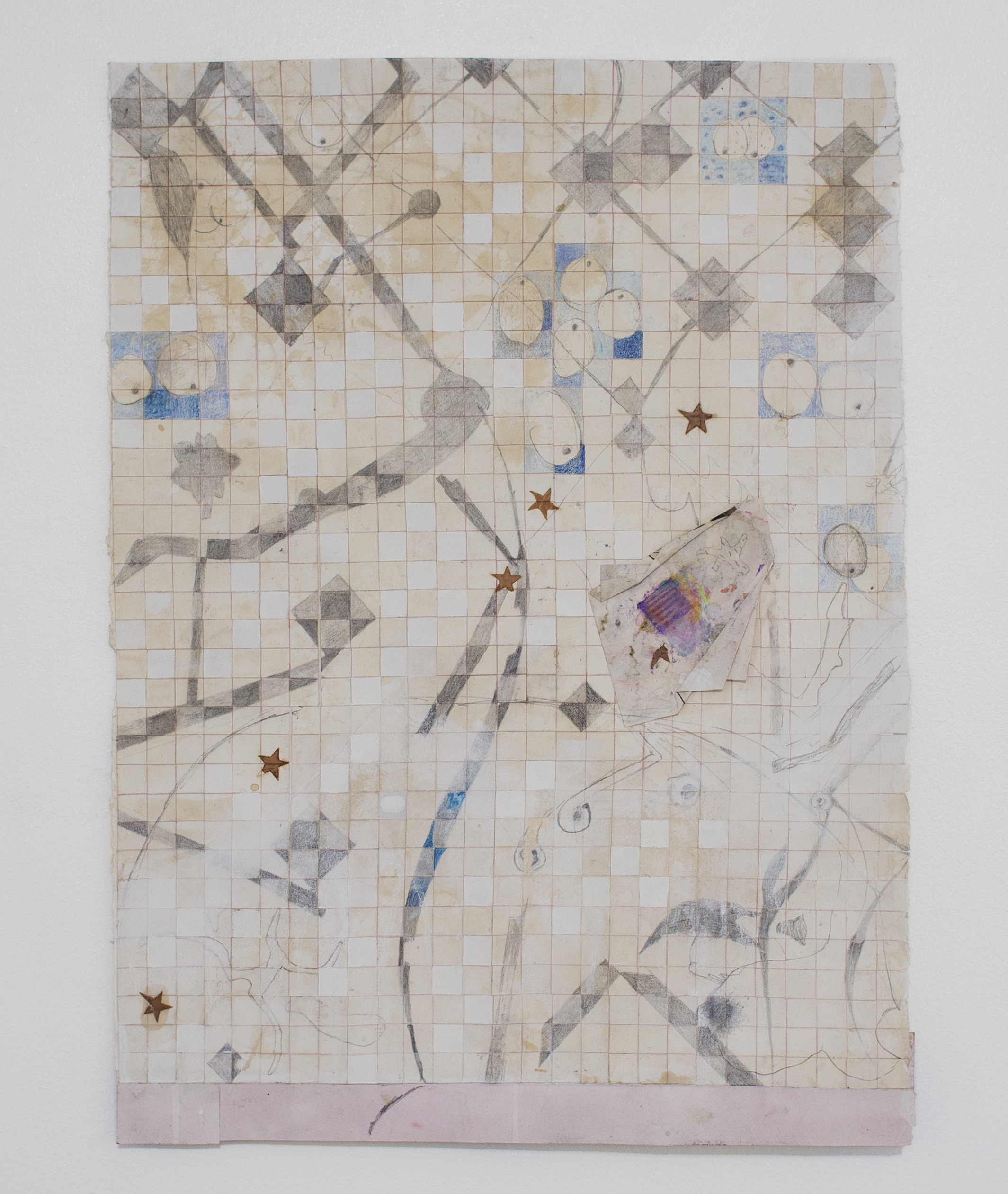 A Cosmology  , 2016-17  Graphite, acrylic, color pencil, pressed leaves, collage on cut paper