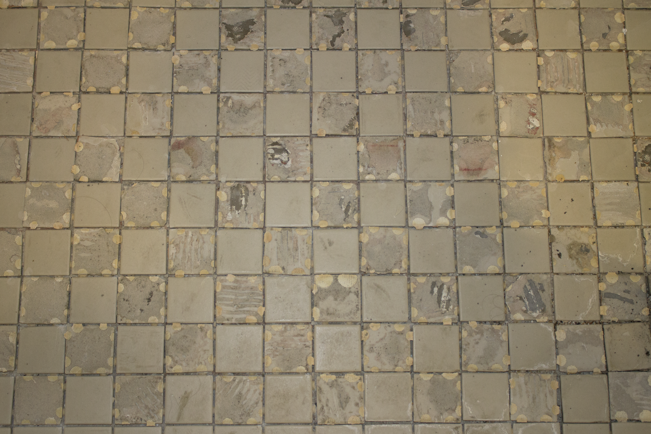 In the shower stalls, I flipped every other tile
