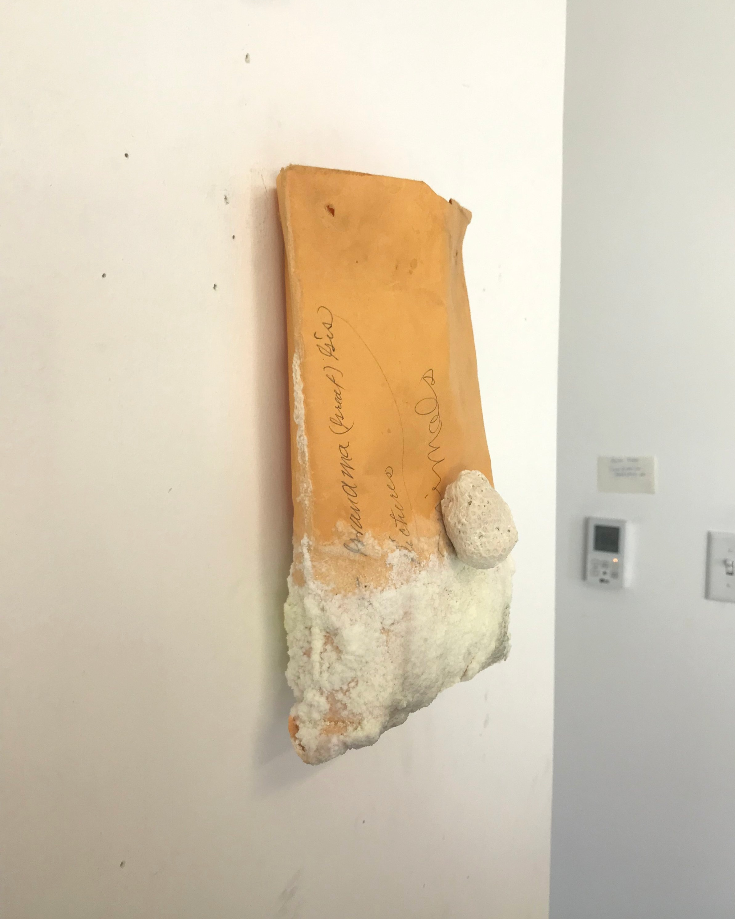 salt, dye, coral on found envelope, 2019