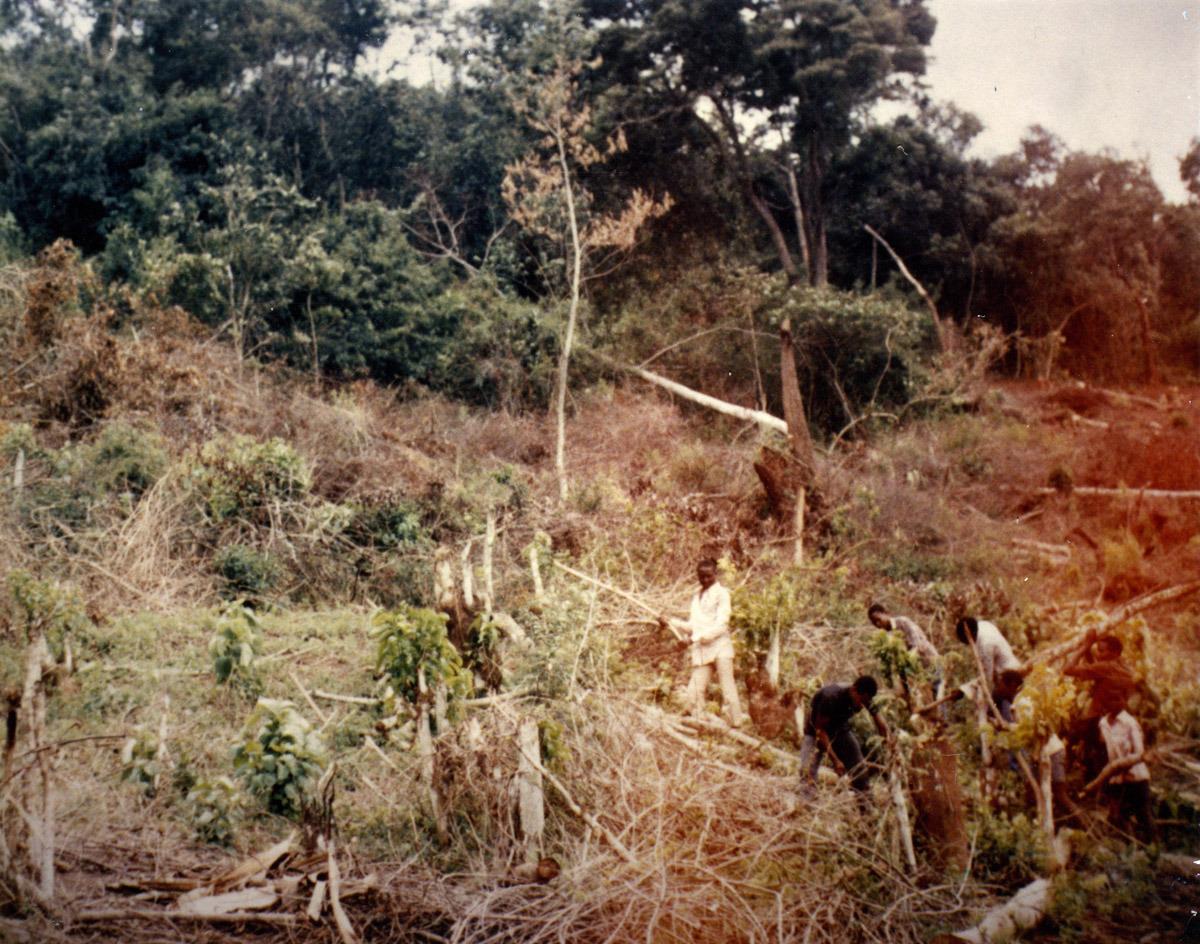 1988_1.jpg