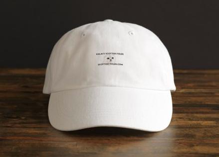 Hats $21.00
