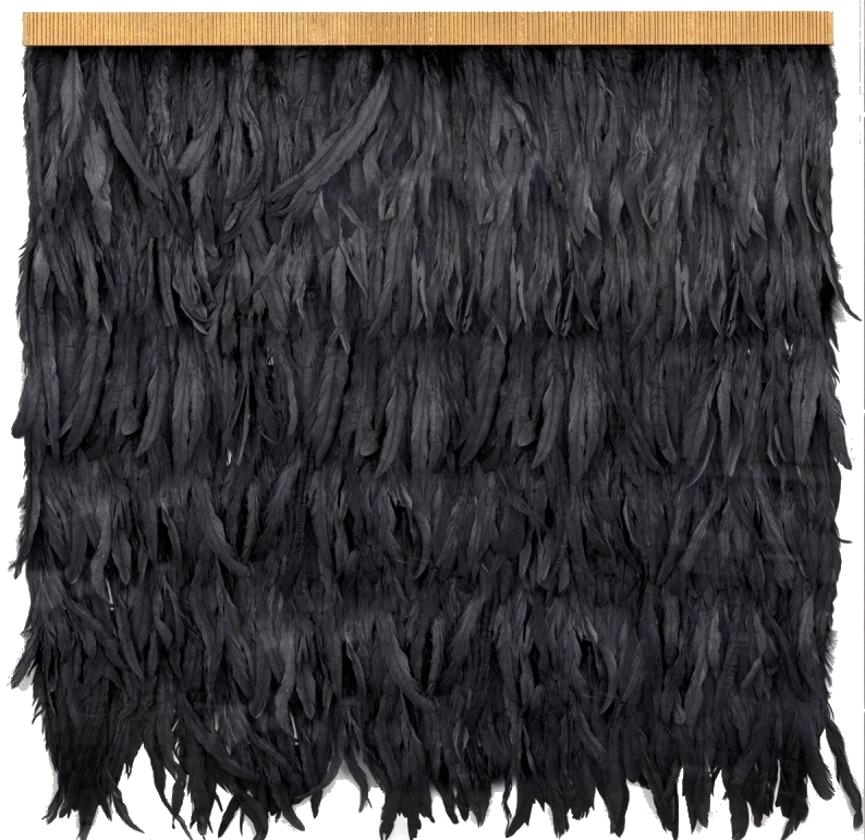 black feather wall hanging