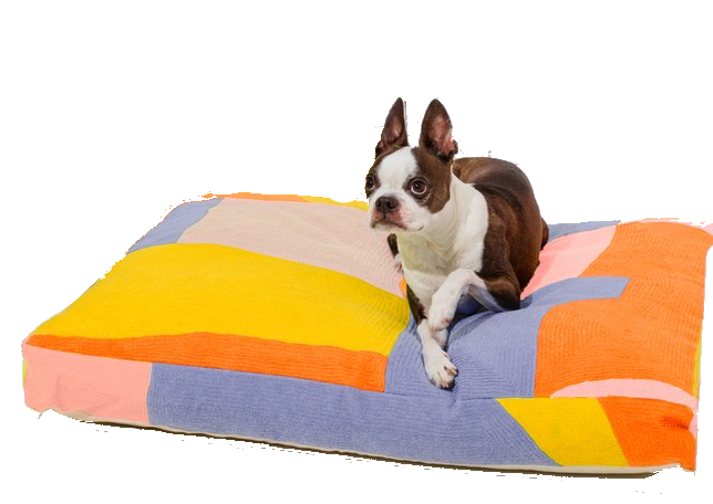 mutli-colored cotton dog bed