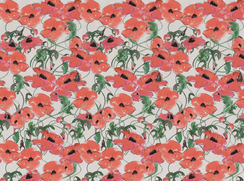 poppies wallpaper - sold at supply