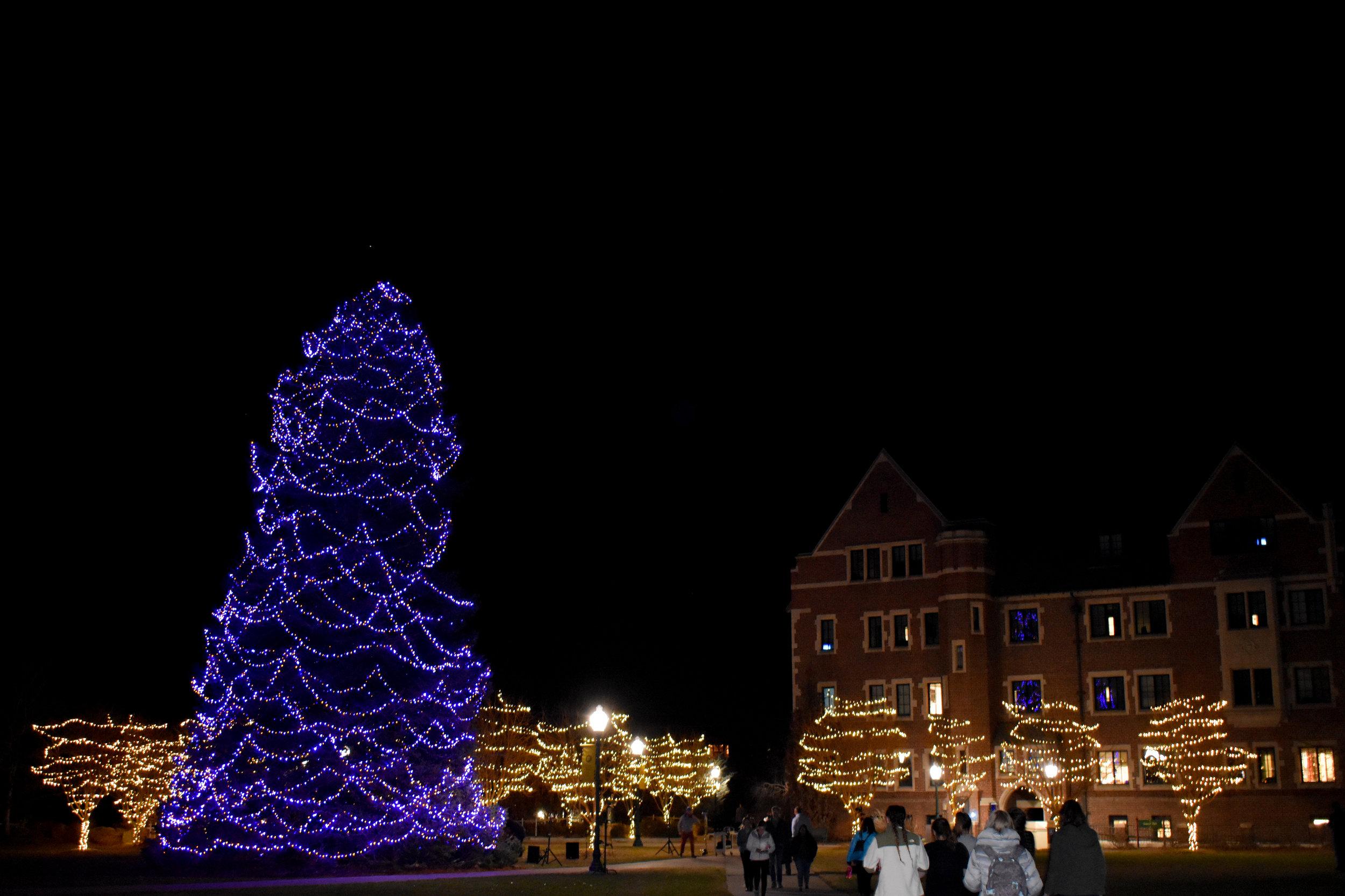 Tree Lighting 12.jpg