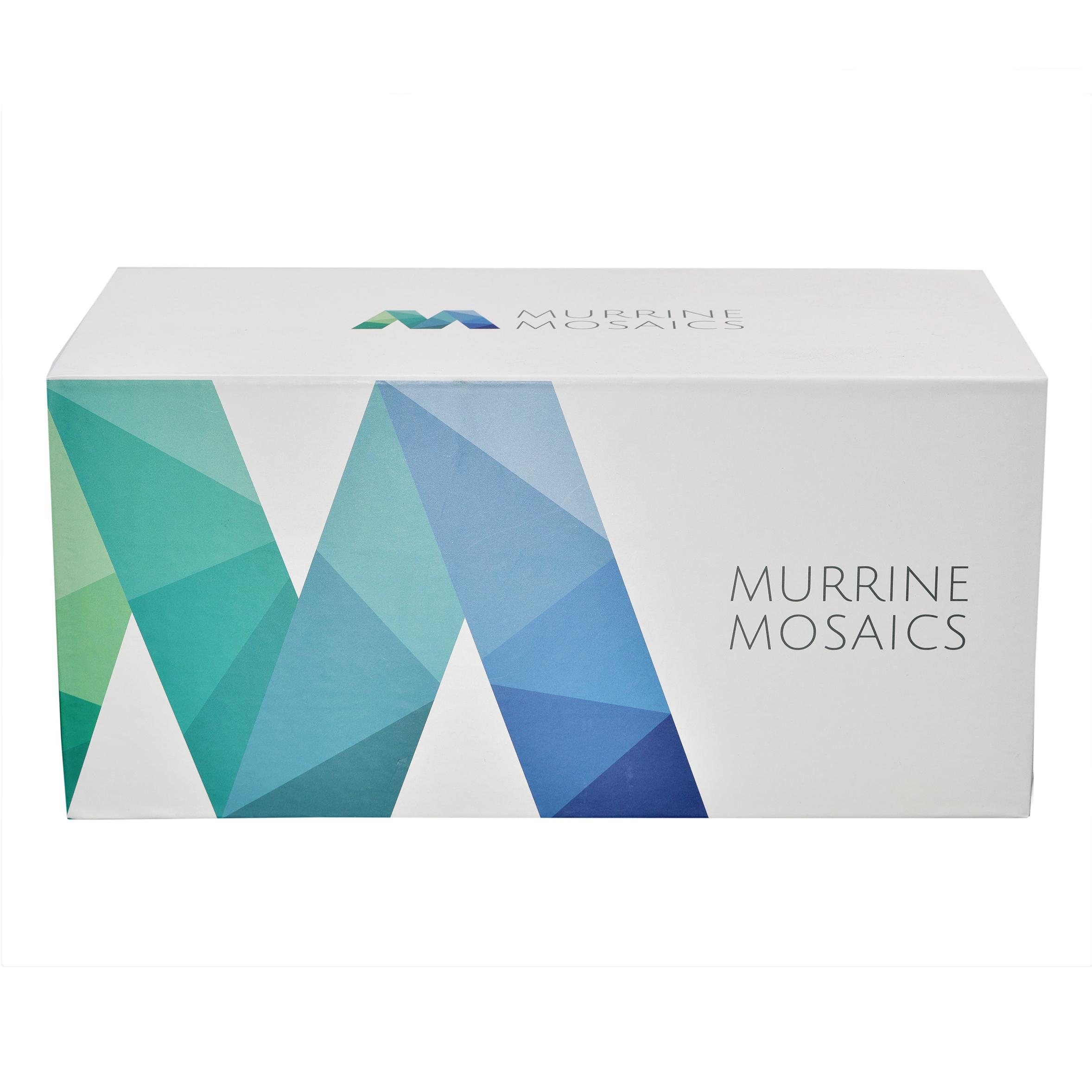 Murrine Mosaic Swatch Box_02.jpg